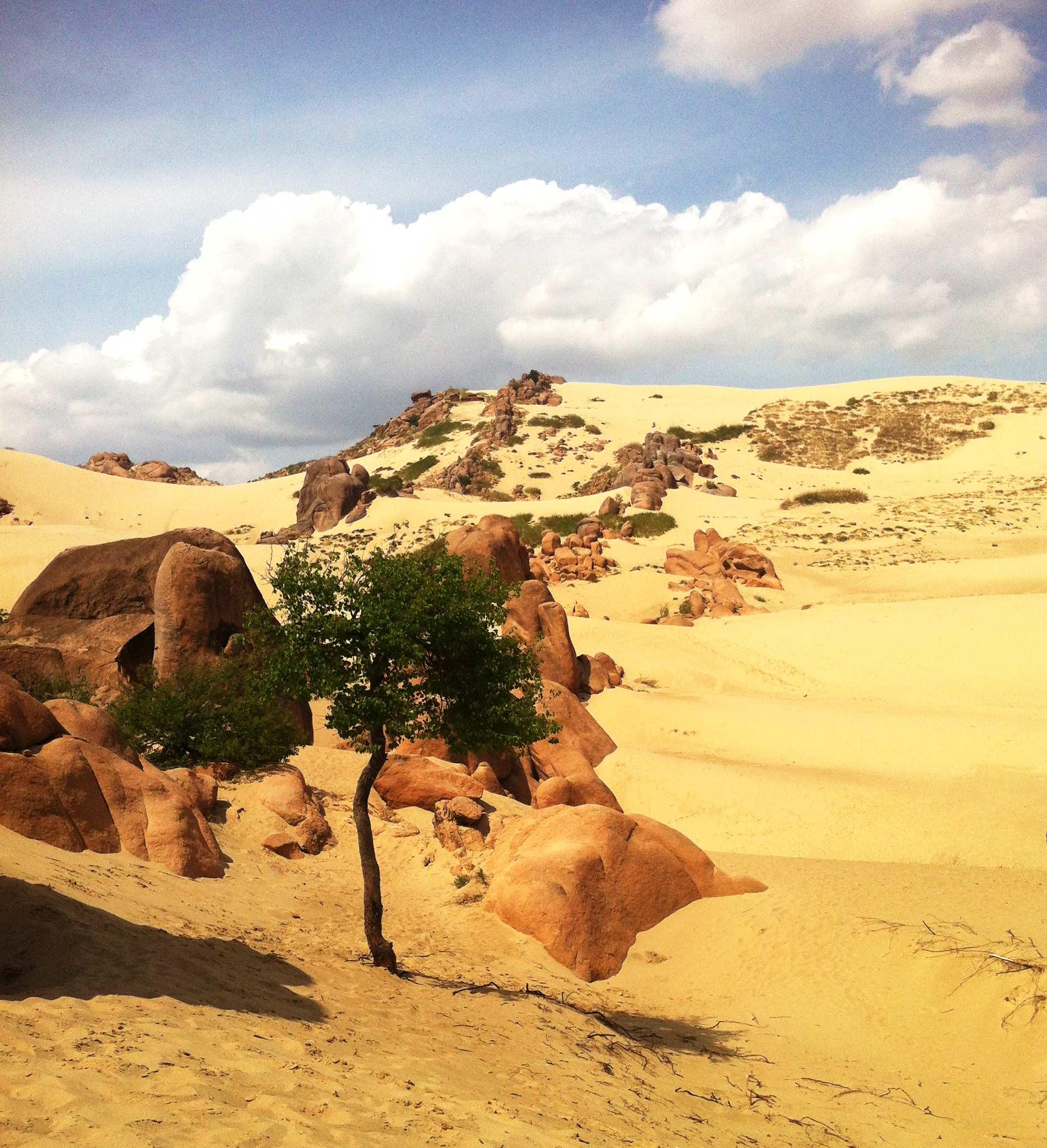 赤峰进-红山玉龙沙湖、赤峰贡格尔草原、承德避暑山庄纯玩五日游