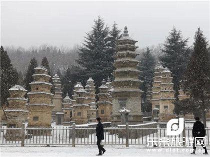 文化河南:郑州、少林寺、龙门石窟、白马寺、丽景门、清明上河园、包公祠、2飞4日游